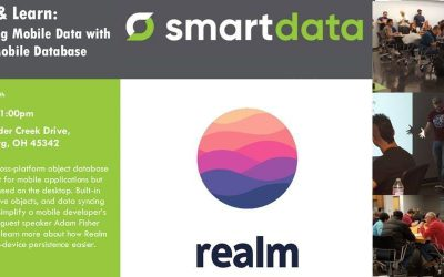 Persisting Mobile Data with Realm Mobile Database